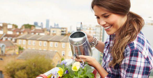 Трави, овочі, квіти: як влаштувати міні-сад на балконі