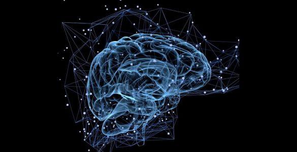 5 кращих добавок для поліпшення роботи мозку