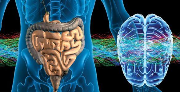 Знайдена дієта, яка знижує ризик хвороби Альцгеймера