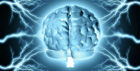 5 порад, які допоможуть зберегти молодість мозку