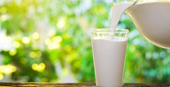 7 продуктів, в яких корисних жирних кислот більше, ніж в риб'ячому жирі
