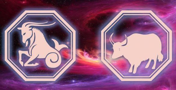 Козеріг – гороскоп на 2021 рік