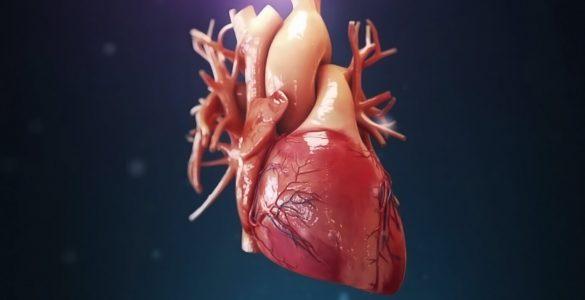 Названо найбільш корисні речовини для серця