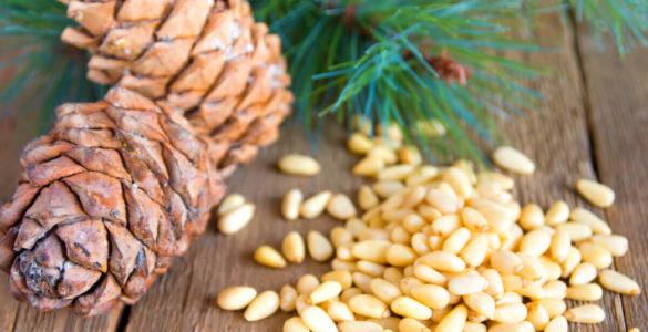 У кедрових горіхів виявили нові властивості