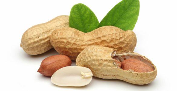 Лікарі назвали найбільш корисний для судин горіх