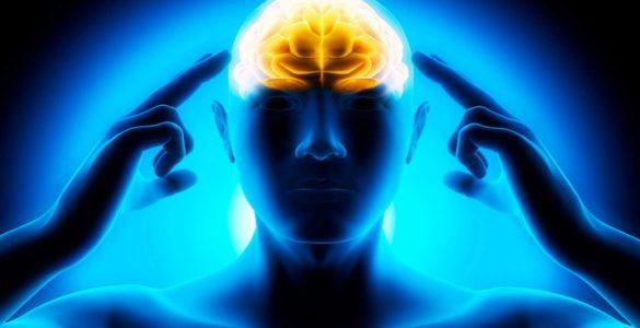 Американські лікарі назвали найбільш шкідливі для мозку продукти
