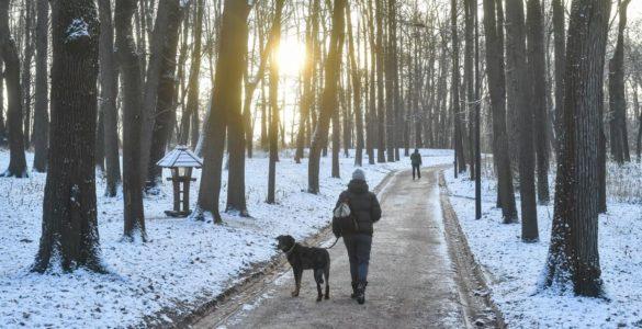 Ранкову звичку назвали ключем до довголіття