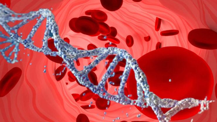 ДНК кров