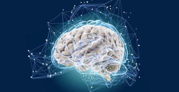 Як зберегти здоров'я мозку з віком