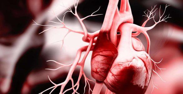 Названий корисний для здоров'я серця вітамін
