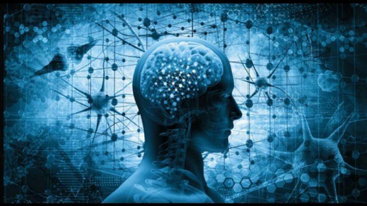 Мозок і вірус