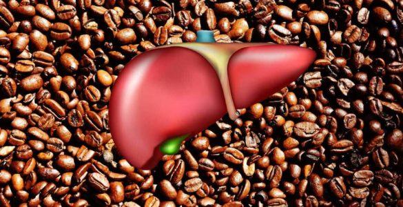 Вчені виявили несподіваний вплив кави на печінку