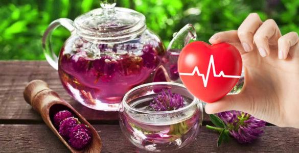 Проти тромбів і для серця: названий простий, але корисний квітковий чай