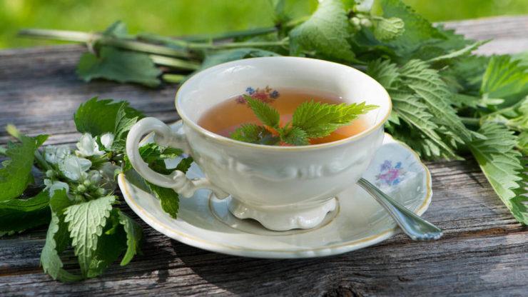 Чай з кропиви