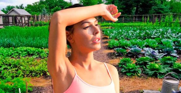 Захист від сонця: як зберегти здоров'я, працюючи на дачі в спеку