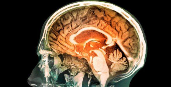 Для пам'яті і уваги: ранкові звички, які підтримають здоров'я мозку